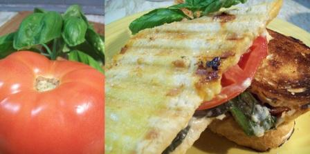 roman panini, basil recipes, recipes with basil